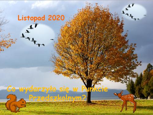 Czytaj więcej: Listopad 2020